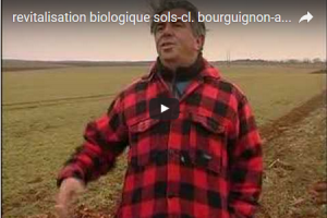 2012 11 bourguignon revitalisation sols video